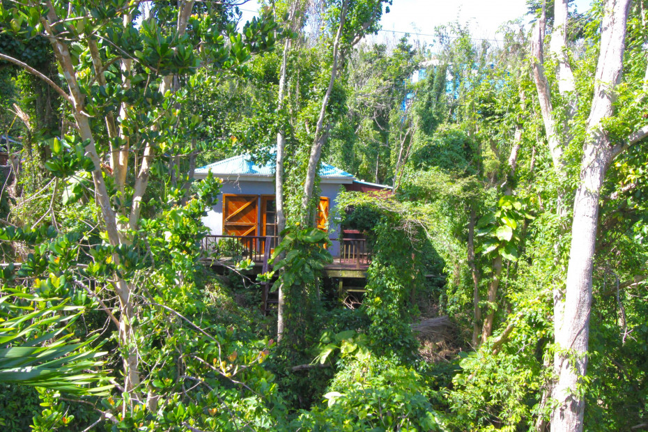 Guest House from trees