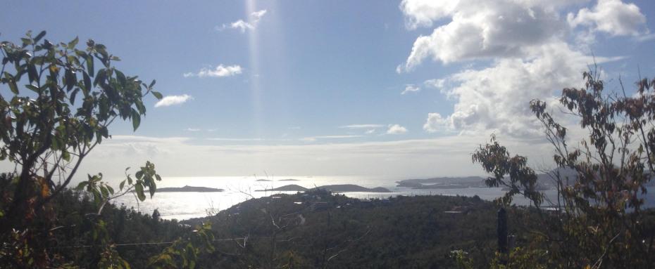 View shot 2018