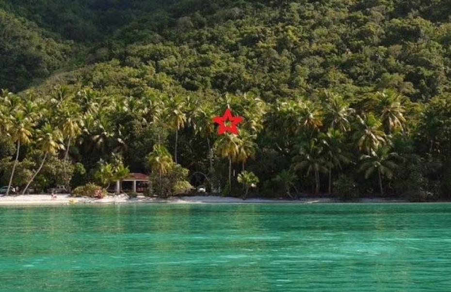 maho beach cropped