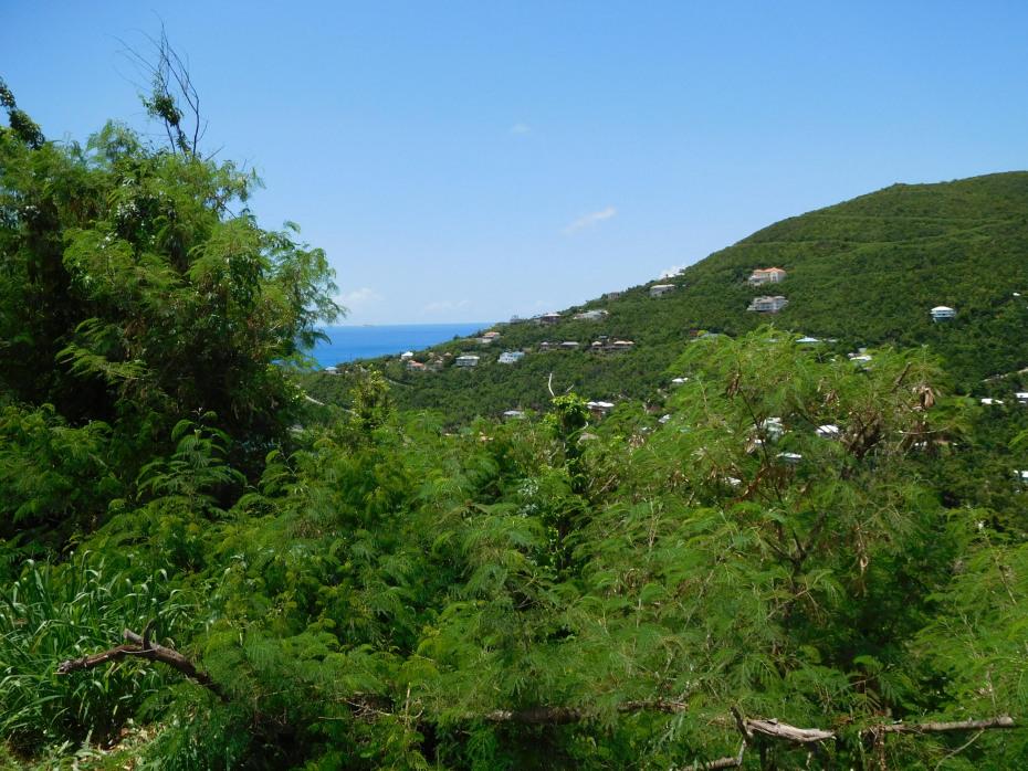 Potential water views