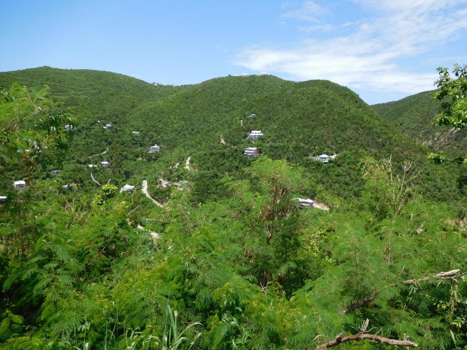 Hillside views