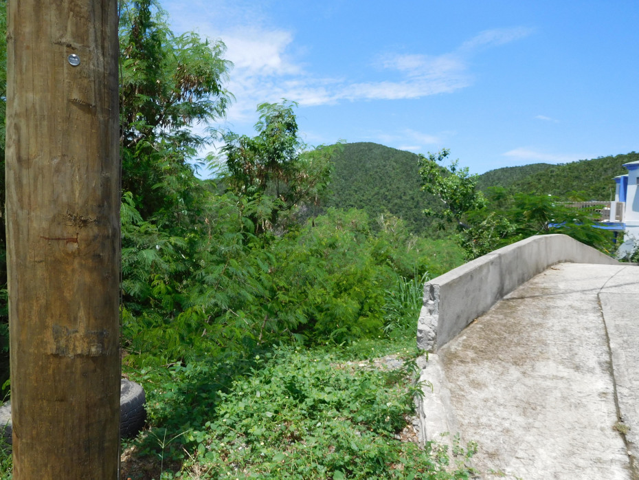 Driveway easement