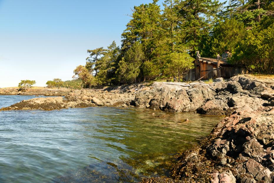 0 xxx Reef Island Photo 14