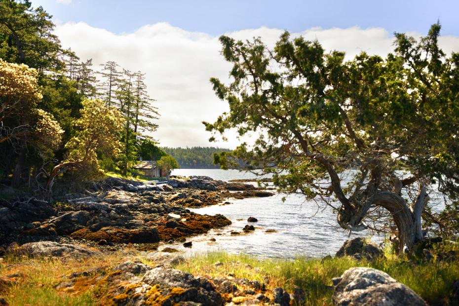 0 xxx Reef Island Photo 7