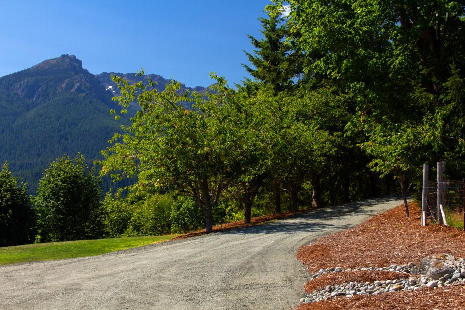 7825 S Mount Angeles Road Photo 43