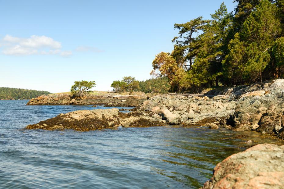 0 xxx Reef Island Photo 4