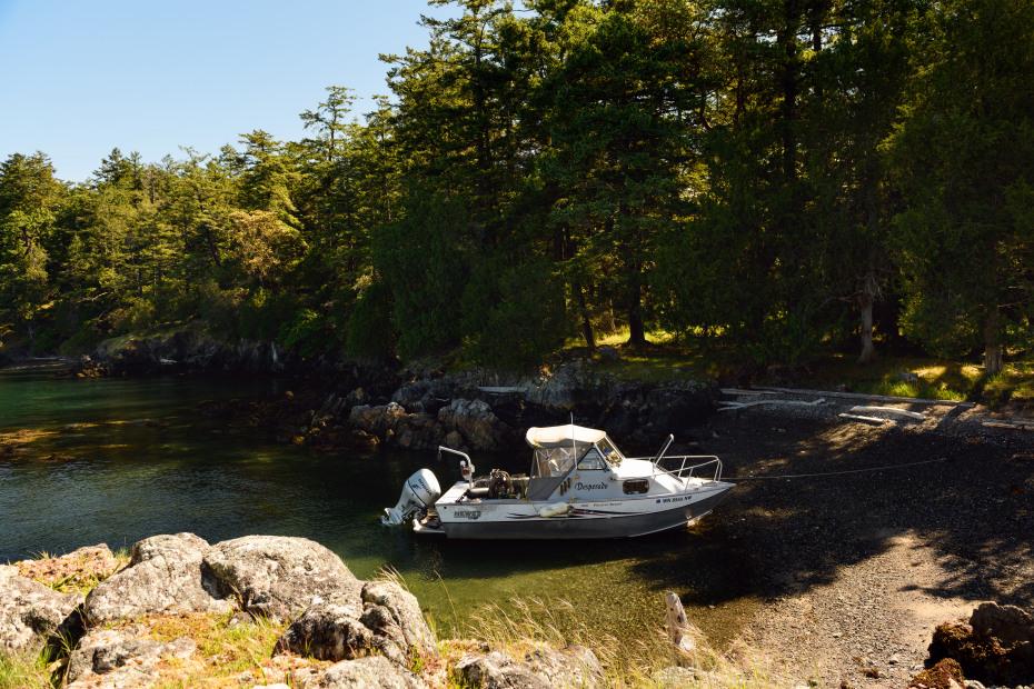 0 xxx Reef Island Photo 6
