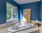 Soaking tub with sunlight streaming in and a view of your own private forest